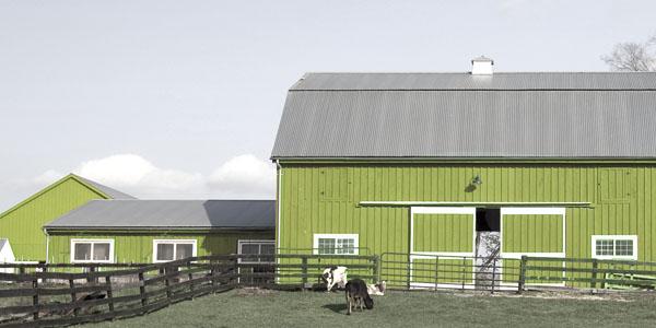 Energielösungen für Landwirtschaft